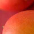 オーストラリアマンゴー (マチルバ)