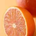 タロッコオレンジ (イタリア産)